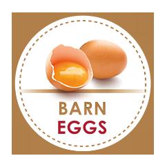 uova da galline allevate a terra